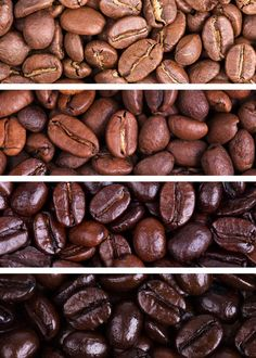 79 Types of Coffee (Definitive Guide) Drinks, Beans, Names, Roasts - Coffee - Kaffee Types Of Coffee Beans, Different Types Of Coffee, Kinds Of Beans, Café Chocolate, Chocolate Flavors, Chocolate Powder, Coffee Tasting, Coffee Drinks, Roasting Times