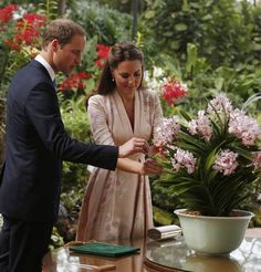 Official: The Duke and Duchess label the plant named in their honour