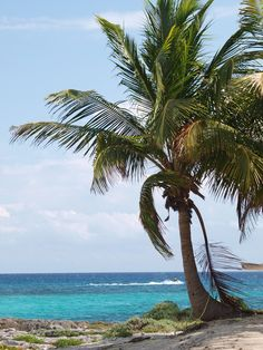 Grand Sirenis Riviera Maya.   Less then 6 weeks away! I can't wait!