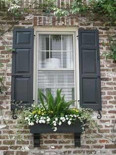window boxes - so pretty.I love window boxes - so prettylove window boxes - so pretty.I love window boxes - so pretty Window Box Plants, Window Box Flowers, Window Planter Boxes, Window Shutters, Flower Boxes, Garden Windows, Cottage Homes, Front Yard Landscaping, House Front