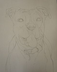 Horse Face Drawing, Pitbull Drawing, Ball Drawing, Art Drawings Sketches Simple, Realistic Drawings, Cool Drawings, Cute Animal Drawings, Cartoon Drawings, Otto Schmidt