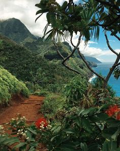 From the trail today on the na pali coast. Kauai, Hawaii. Babe we hiked this!! @danielgibson