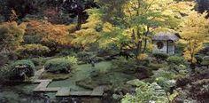Image result for tatton park japanese gardens