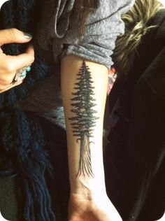"""Redwood tree by Jody, Accent Tattoo, Ukiah CA Born and raised in the redwoods, this is my little piece of home I take with me everywhere"""