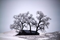National Geographic Traveler Magazine: 2012 Photo Contest - The Big Picture - Boston.com