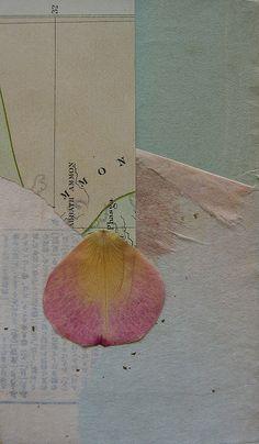 Rose petal by susan gilman jokelson, via Flickr