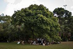 Ibirapuera park TL Portfolio picnic