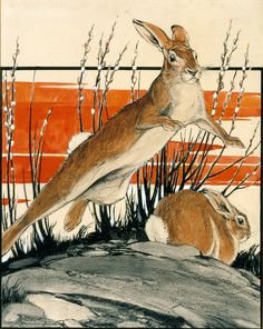 Leaping Cottontail   Paul Bransom   Artwork   National Museum of Wildlife Art