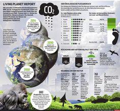 Der Living Planet Report 2014. http://kurier.at/lebensart/leben/ergebnisse-wwf-praesentiert-den-living-planet-report-2014/88.379.891