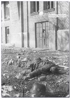 In the once formidable german Army was slowly destroyed. See it in pictures. Ww2 Pictures, Ww2 Photos, History Photos, German Soldiers Ww2, German Army, Photo Choc, Afrika Korps, Warsaw Ghetto, War Photography