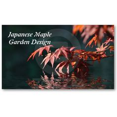 A tranquil image of red Japanese maple reflections on a dark blue green background, garden design or general purpose business card. Price varies according to size, qty and card stock $22.75