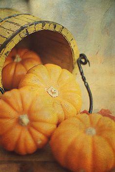 Fall....<3