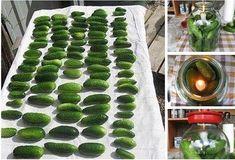 Geniálny trik ako udržať uhorky stálej čerstvé až niekoľko mesiacov! Budú Vám stačiť 2 ingrediencie! Sprouts, Zucchini, Watermelon, Fruit, Vegetables, Cooking, Food, Funguje To, Massage