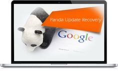 Google panda recovery services are the best option to recover your affected websites and here are the services provided by panda recovery service providers.
