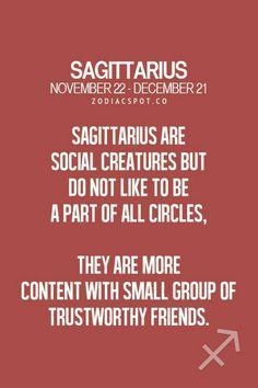 Sagittarius Zodiac November December t shirt born t-shirt women men Sagittarius Personality, Sagittarius Love, Sagittarius Quotes, Zodiac Signs Sagittarius, Sagittarius And Capricorn, Astrology Zodiac, Sagittarius Season, Astrology Signs, Le Zodiac