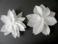 Taking Notes. Stories about a big old house in the country. - Home - How to make paper flowers.