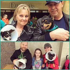 These two families each adopted two dogs at our Home for the Holidays event at Meadows Mall this past weekend! It's a double dose of double dog adoptions at Home for the Holidays! Rocky and Chewy (top) went home with Pamela and Frank, and Patitas and Coffee joined the Goddard family!
