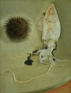 still life with squid and sea urchin lucian freud 1949 - Irene Cocco per livingwomen nuovo post