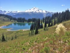 I'm thankful for the protected wilderness we have on our beautiful planet. Glacier Peak Washington USA. [OC][3121 x 2341]