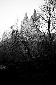 The City by elrina753, via Flickr