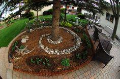 Back yard spiral