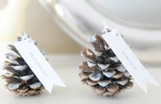 glittered pinecone seating cards