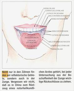 Zungenreflexzonen