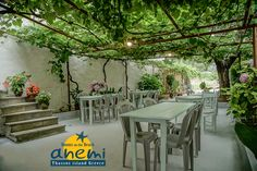 The green backyard of Anemi Rooms to Let on the Beach of Skala Potamias, Thasos island Greece. Tel.: +30 25930 61 480, +30 6947 589 555, E-Mail: anemithassos@gmail.com Ενοικιαζόμενα δωμάτια στην Παραλία Χρυσή Ακτή της Σκάλας Ποταμιάς, Θάσος.