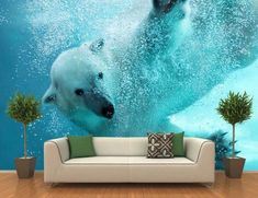 Bring a super awesome alternative to wall paints that depicts a scene from the Poles with this Polar Bear Underwater Attack Wall Mural. Beach Wall Murals, Wall Mural Decals, Removable Wall Murals, Floor Murals, Floor Art, Framed Wallpaper, Photo Mural, Cool Walls, Polar Bear
