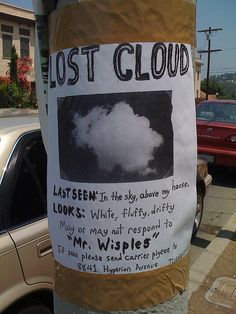 "Lost Cloud: Lost cloud last seen in the sky above my house looks white, fluffy, drifty may or may not respond to ""Mr. Wisples"" If seen please send carries pigeo Funny Quotes, Funny Memes, Hilarious, Funny Videos, Ironic Memes, Epic Quotes, Funny Ads, Lost Poster, Commercial Ads"