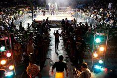 luchas libres auditorio de tijuana - Google Search
