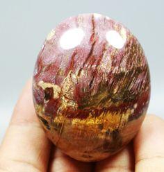 82g POLISHED PETRIFIED WOOD FOSSIL AGATE PALM STONE Crystal Madagascar
