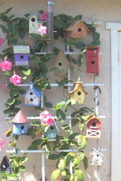 birdhouse pictures | Misguided Designs Hand Painted Gifts