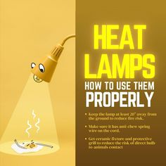 Livestock heat lamps are commonly used around South Carolina to help farmers keep their animals warm and safe. However, you have to be careful when using them!