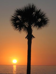 Wishing I was here ! St. Pete Beach, Florida