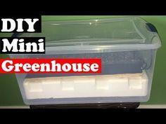 How to make an Indoor Greenhouse – DIY (mini greenhouse)Greenhouse gardening, di… - Modern Diy Mini Greenhouse, Cheap Greenhouse, Build A Greenhouse, Indoor Greenhouse, Greenhouse Growing, Greenhouse Wedding, Greenhouse Gardening, Greenhouse Ideas, Container Gardening