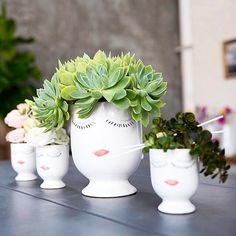 There's a few new faces around here! Have you seen our new products for 2016 yet at accentdecor.com?  Product pictured: The Celfie Vase  #homedecor #atlmkt #succulents #floraldesign