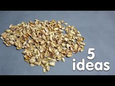 5 creative ideas that can be made from pistachio shells - YouTube Pista Shell Crafts, Pistachio Shells, Shell Art, What To Make, Wood Slices, Black Eyed Peas, Handicraft, Embellishments, Diy And Crafts