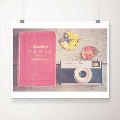 paris photograph, paris, paris decor, camera photography, red, coral, pink, fall, leaf, still life photography, camera, rustic
