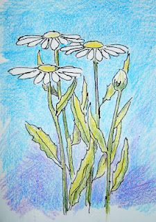 How to Draw Daisies Illustration from a drawing lesson you can see the lesson at http://drawinglessonsfortheyoungartist.blogspot.com/2012/06/how-to-draw-daisies-lesson-and.html#