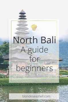 What to see in North Bali what accommodation to stay and where to eat in Lovina.