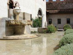 Tranquil pool, Castelvecchio, Verona