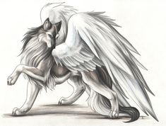 Winged Wolf, only the clan leaders have wings, a gift from skota, the wolf spirit. I find this so beautiful