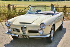 Alfa Romeo Spider, Alfa Romeo Cars, Motor Car, Touring, Antique Cars, Classic Cars, Bungalow, Guitars, Cars