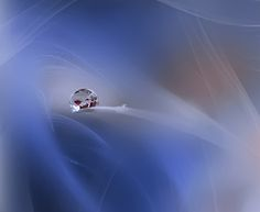 Water Drop Photos: 35 Beautiful Examples of High-Speed Photography