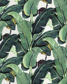 Tropical Banana Leaf Print Stretched Canvas