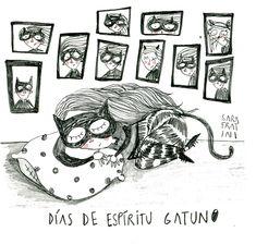 #cat woman ?