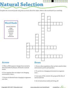 Darwin's Natural Selection Worksheet Answers additionally Darwin ...