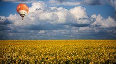 http://ift.tt/1PuBZOe Fine #ArtApril Balloon by pixelpilot