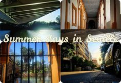 Summer has arrived in #Seville. Don't let the heat put you off visiting this amazing city!